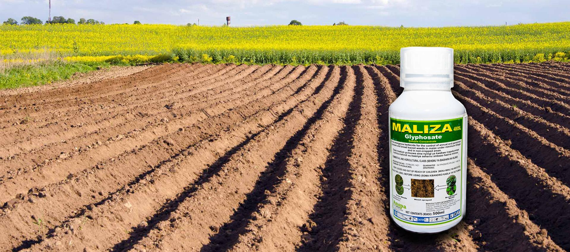 Maliza 480 SL